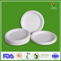 China nontoxic harmless custom pizza slice tray