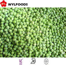 IQF china high quality frozen green peas