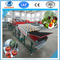 Hot sell industrial dry cleaning machine Muti-function fruit and vegetable washing drying machine