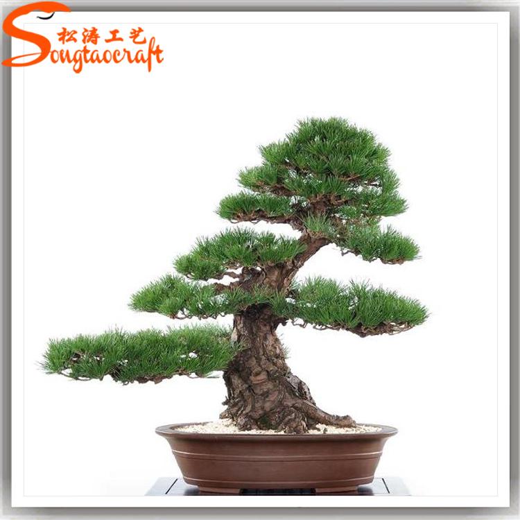 Chine fatory gros pas cher usine de bonsa d 39 int rieur for Arbre bonsai exterieur