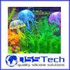 Wholesale freshwater shrimp aquarium wholesale,aquarium jellyfish,aquarium decoration