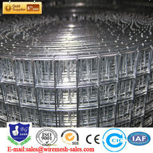 Galvanized Welded wire mesh in rolls(factory price)