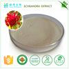 China manufacturer bulk supply schisandra chinensis extract powder