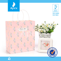 Stylish Gift Packing Bag Tote Bag Unique Paper Bag