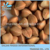 2013 China new best price shelling buckwheat