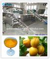 Comercial de pasta de damasco de produção da máquina( fruto de equipamentos de produção) da china