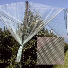transparent color insect net / netting / insect proof net