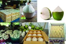 aromatic coconut