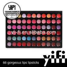 New year!66 color makeup lip palette organic lip gloss