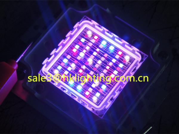 China Market CE Approved Brigelux Chips 3w 10w 30w 60w 100w LED RGB Full Spectrum for Plant Grow Light (5).jpg