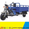 150cc 3 Wheels Scooter Stand Up Electric Scooter
