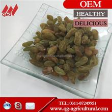 Raisin/dried fruit /goji berry with low price