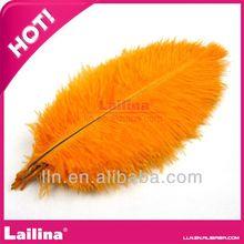de calidad superior de gran tamaño natural de plumas de avestruz precio al por mayor