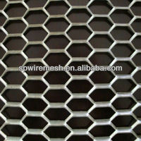 Expanded Metal Sheet/ Mesh for Railway Fence/Bridge Fence