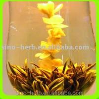 Nice Appearance And Tasty Blooming Tea Flower In Snow Flowering Tea