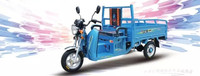 Motorized Electric Hybrid cargo Tricycle / light loading use electric / heavy loading use oil gas / easy switch transform