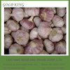Hot Sale New Fresh White Garlic in Different Size