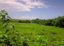 Land in Karawang, West Java, Indonesia
