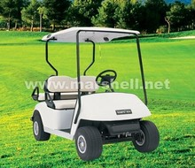 luxury 2 seater golf buggies for sale with CE certificate from China DG-C2