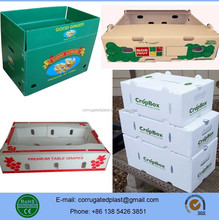 PP Corrugated Fruit and Vegetable Packaging Trays/Boxes/Containers