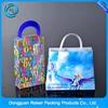 Hot Popular PVC zip bag,soft PVC bag,PVC handle bag
