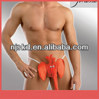 funny men briefs red satin elephant and women sex underwear