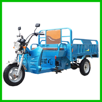 Open Type Advertising Tricycle With Cargo Box for Sale