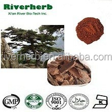 Natural Pine bark extract with 95% proanthocyanidins