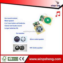 Top Level Specification Recordable Sound Chip For Music Business Card