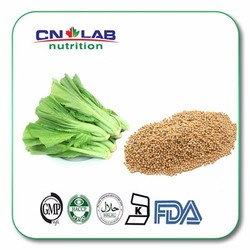 Factory price Pure Natural Brassica juncea (L.) Czern. Extract, Mustard Seed Extract Powder