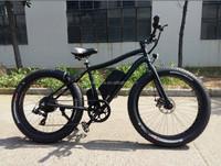 48V 500W fat tire electric mountain bike CE /seagull mountain electric bicycle / lithium battery e bike