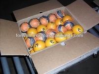 Kinnow Mandarin Tangerine Orange Citrus fruit