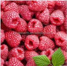 natural weight loss supplements//Raspberry Ketone//cas 5471-51-2