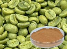 Pure Chlorogenic Acid 50% Green Coffee Bean Extract Powder