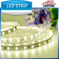 High quality SMD3528 SMD5050 DC12V/24V led strip light with free OEM/ODM service