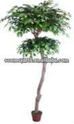 """60"""" s - jumbo tronco estilo topiario saludó con la mano de árboles ficus x 1,260 lvs de la decoración de árboles"""