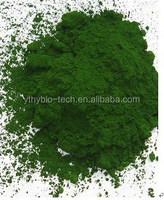 high EPA spray dried Nannochloropsis Oceanica powder