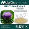 Pure Natural Milk Thistle Extract Silymarin 50% Manufacturer