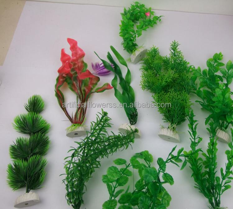 Wholesale landscaping aquarium aquatic plant for Cheap pond plants