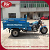 Fashion China popular blue 200cc air-cooled gas powered tricycle cab
