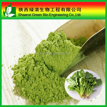 Organic dried spinach extract in bulk/Food grade Spinach juice powder
