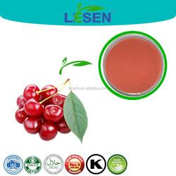 Hot sale A+++ grade acerola cherry fruit powder