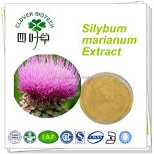 80% silymarin high quality silybum marianum extract
