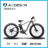New models beach electric bicycle & hub motor&fat electric bike TM265-9-3
