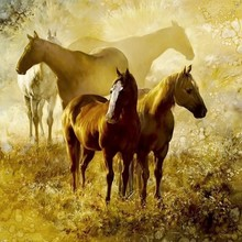 active horse painting, inner room wall decoration canvas art animal painting
