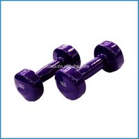 MIni exercise dumbbell ,vinyl dipping dumbbell,multicolor exercise dumbbell