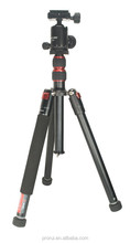 The professional mannequin head holder/tripod for trainnng school in good quality