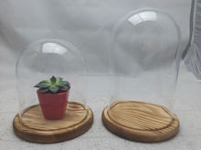 2015 best selling Clear Glass Bell Jar Glass Dome with Wood Base by DZD