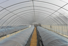 polycarbonate cold frame greenhouse