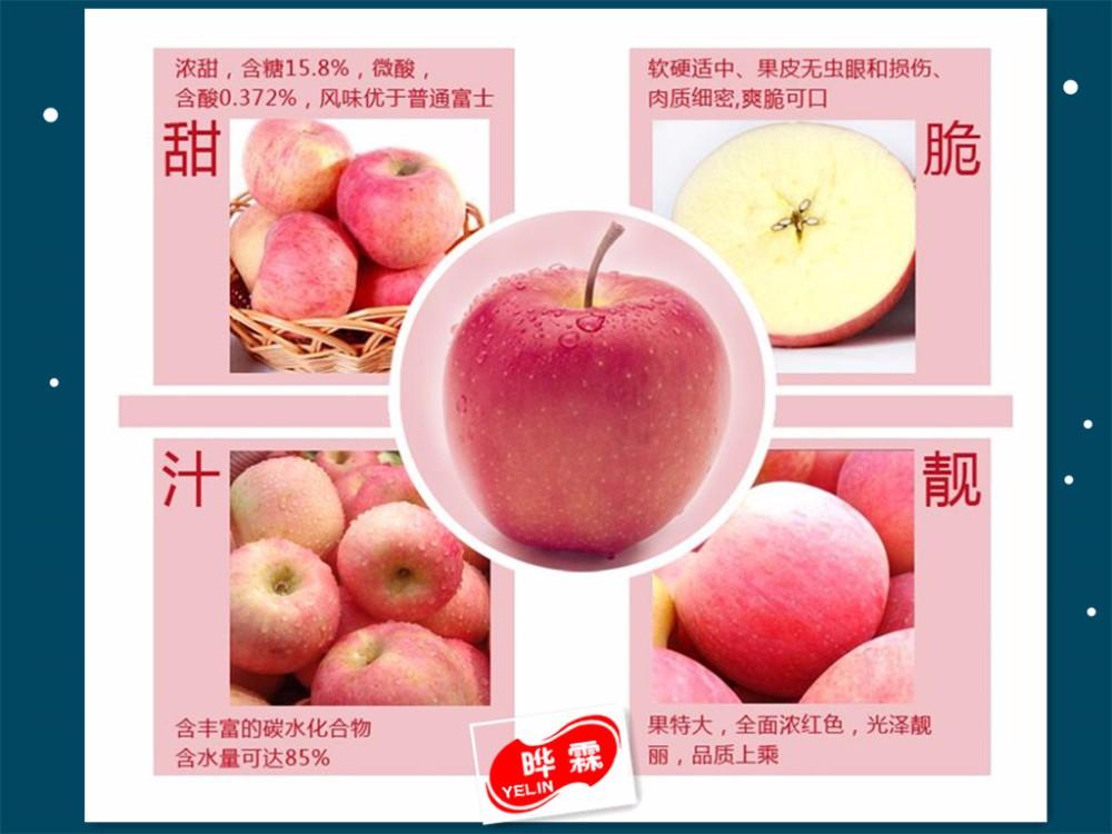 apple 15_.jpg